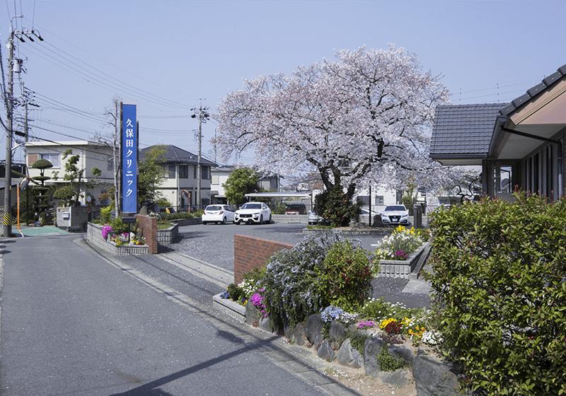 久保田クリニック入口